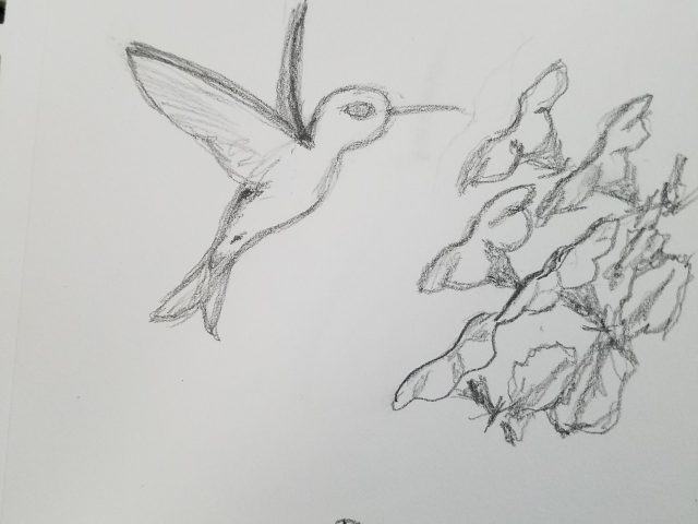 Hummingbird with Petunias