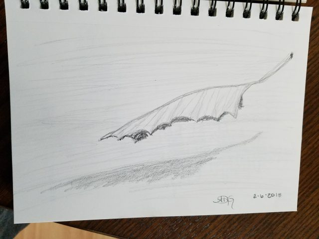 Graphite Falling Leaf Sketch