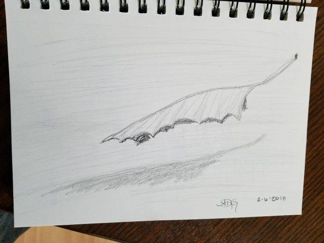 Graphite Falling Leaf Sketch