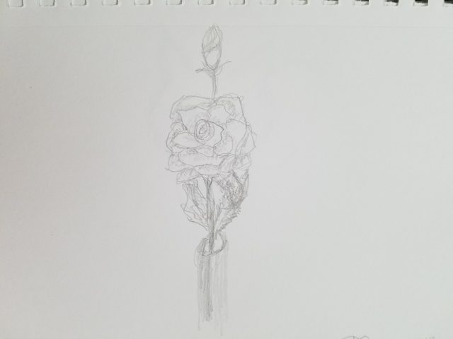 Rose in Bottle Sketch
